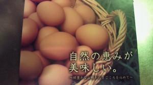 NEC_5594
